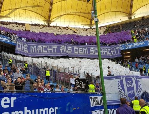 Spieltag 30: Hamburger SV vs. FC Erzgebirge Aue